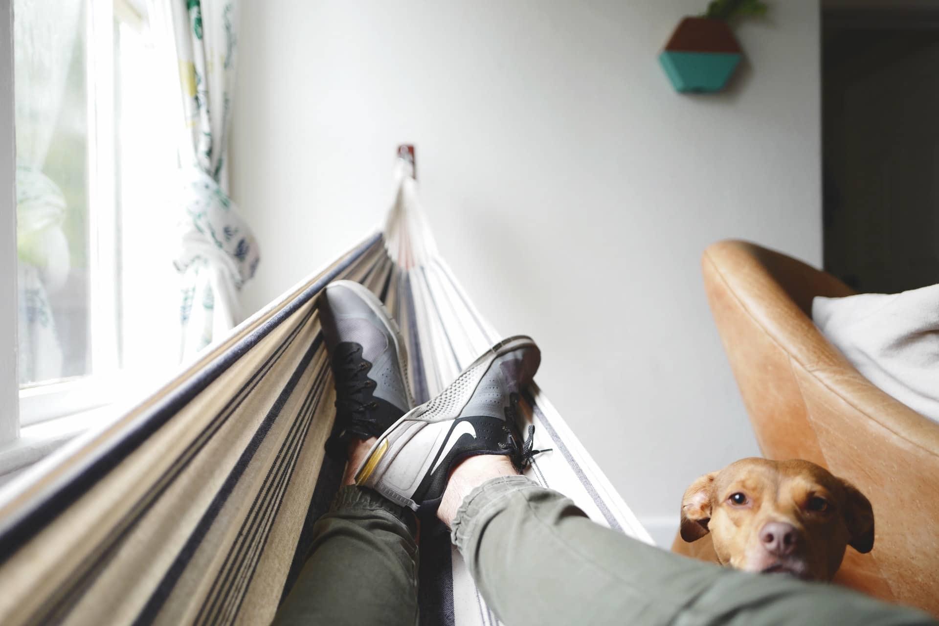 Repos sur un hamac à la maison avec chien et baskets Nike