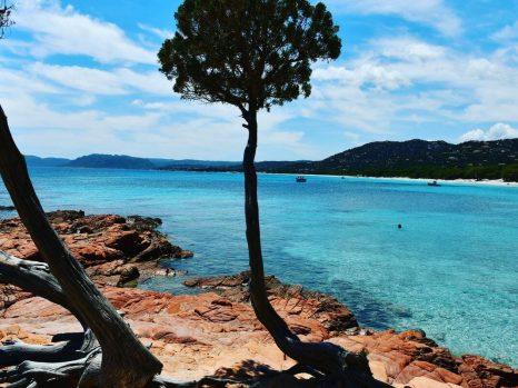 Plage de Palombaggia en Corse du Sud
